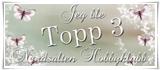JEG VAR MED I TOPP 3 HOS NORDSALTEN HOBBYKLUBB - BURSDAGSUTFORDRING #3, LIFT AV DT LINDA