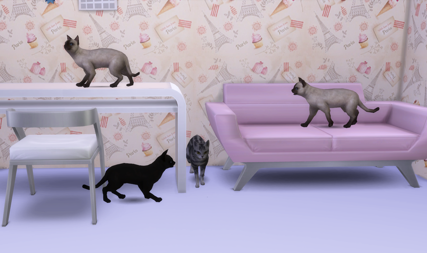 Sims  Cats And Gos