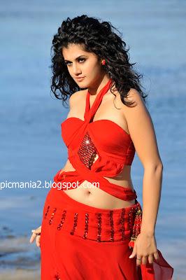 south indian mallu actress Tapsee ( taapsee ) saree bikini navel cleavge show hot image gallery