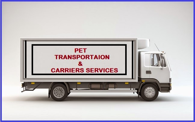 Dog Transport Melbourne