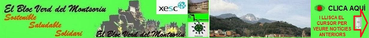 El Bloc Verd del Montsoriu