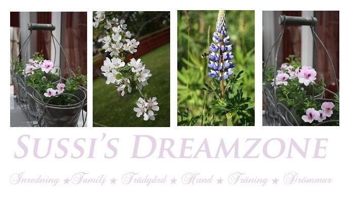 Sussi's Dreamzone