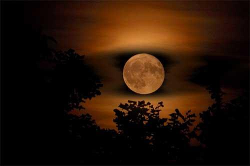POEMAS SIDERALES ( Sol, Luna, Estrellas, Tierra, Naturaleza, Galaxias...) - Página 2 Luna-llena-de-primavera