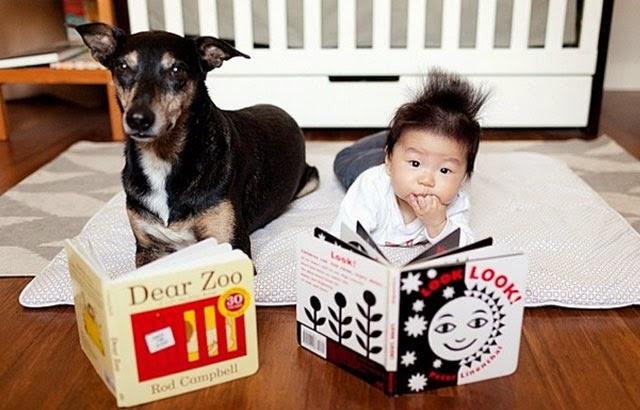 Zoey y Jasper, retratos adorables de dos grandes amigos