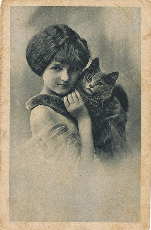 vintage everyday vintage photographs of girls with their cats. Black Bedroom Furniture Sets. Home Design Ideas