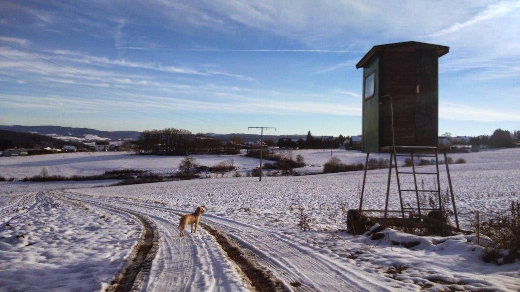 Spaziergang Neujahr Silvester Schnee Vulkaneifel