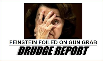 Feinstein's fascist firearm follies fall in flames… but the fight is far from finished
