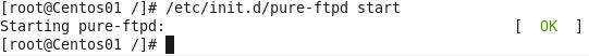 Linux start FTP service