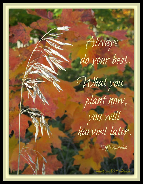 photo of: Autumn Quote: Always do Your Best