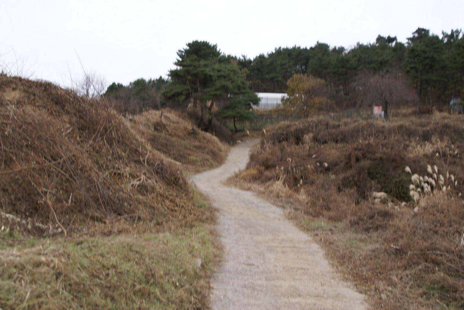 ソフトボール好きの爺様: 韓国蔚山の西生浦倭城(ソセンポウェソン)に行って来ました。