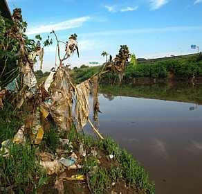 Hoje é o dia do rio – 24 de Novembro