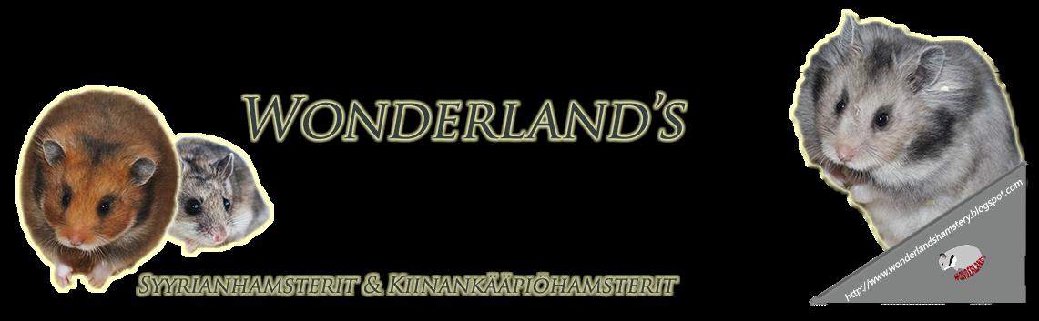 Wonderland's