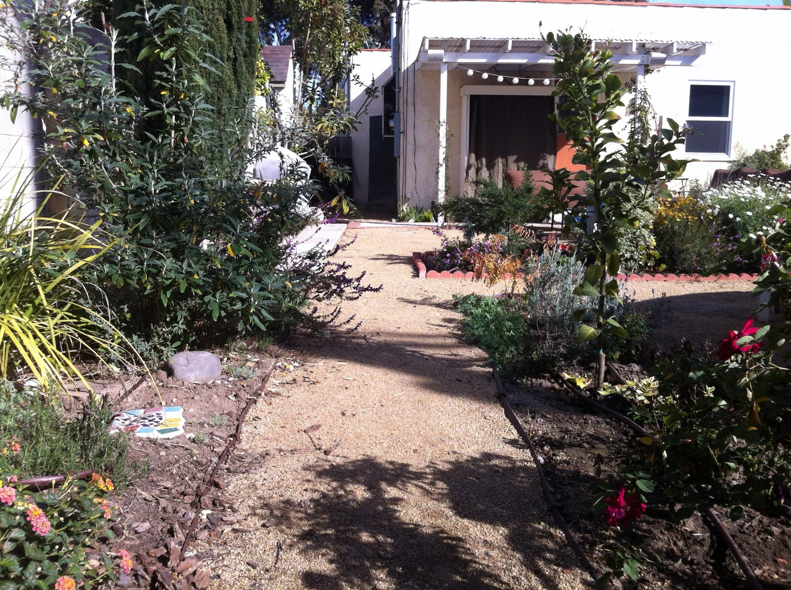 Mar Vista Green Garden Showcase March 2013