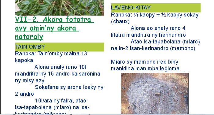 http://www.bimtt.mg/DocWeb/TorolalanaFiarovanaBiolojika.pdf