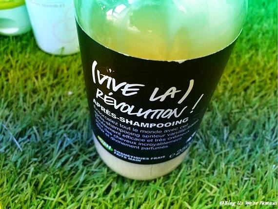 http://bloguswerefamous.blogspot.fr/2014/04/talking-about-revolution-apres.html