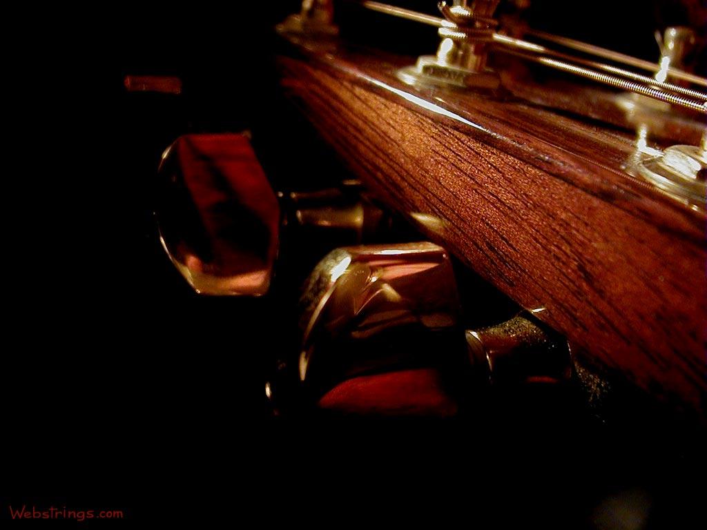 http://2.bp.blogspot.com/-pm6cNHZZnr0/TkJ6u3KpiMI/AAAAAAAABwo/tkyZ8_xe4Hc/s1600/acoustic-tuning-pegs.jpg