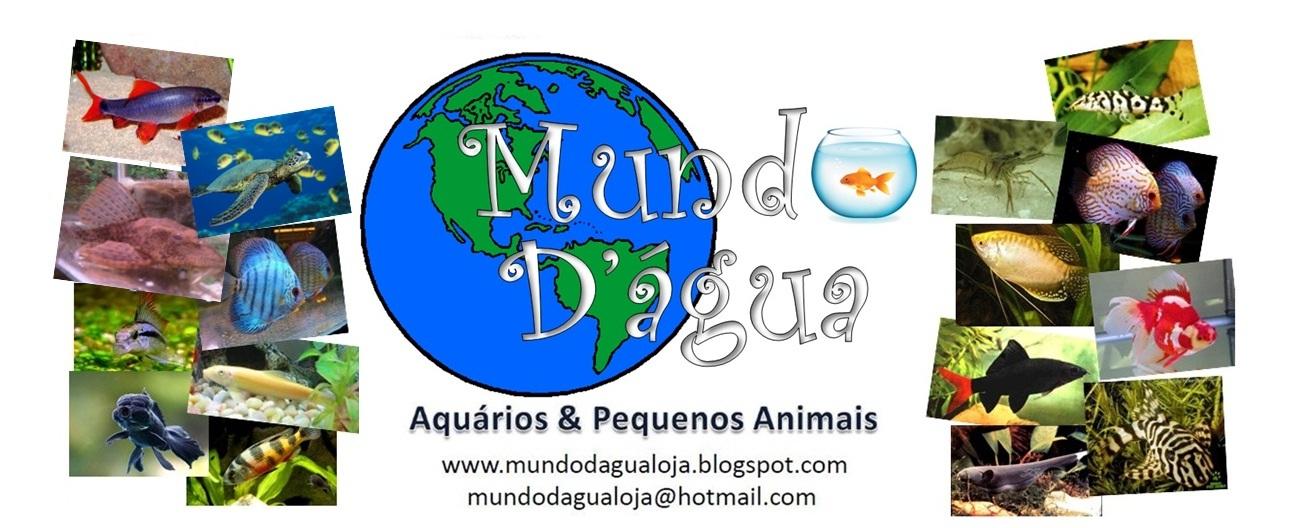 Mundo D'água -Aquários e pequenos animais