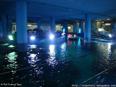 Siam Ocean World Glass Bottom Boat Ride Photo 2