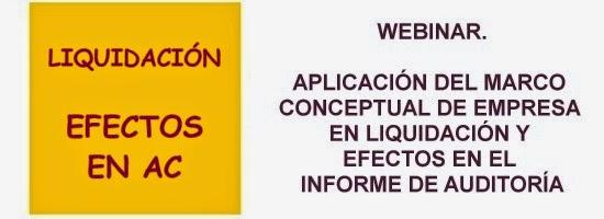 Webinar Aplicación del marco conceptual de emrpesa en liquidación y efectos en la auditoría cuentas