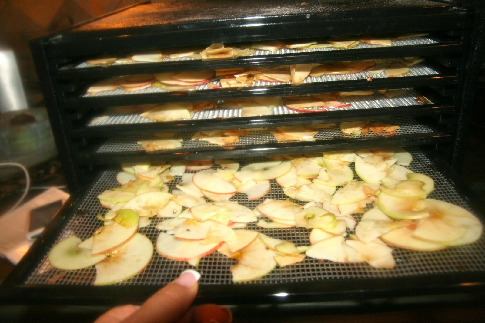 Food Dehydrator Fruit Roll Up Recipe