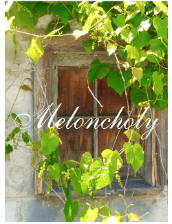 Meloncholy Notebook