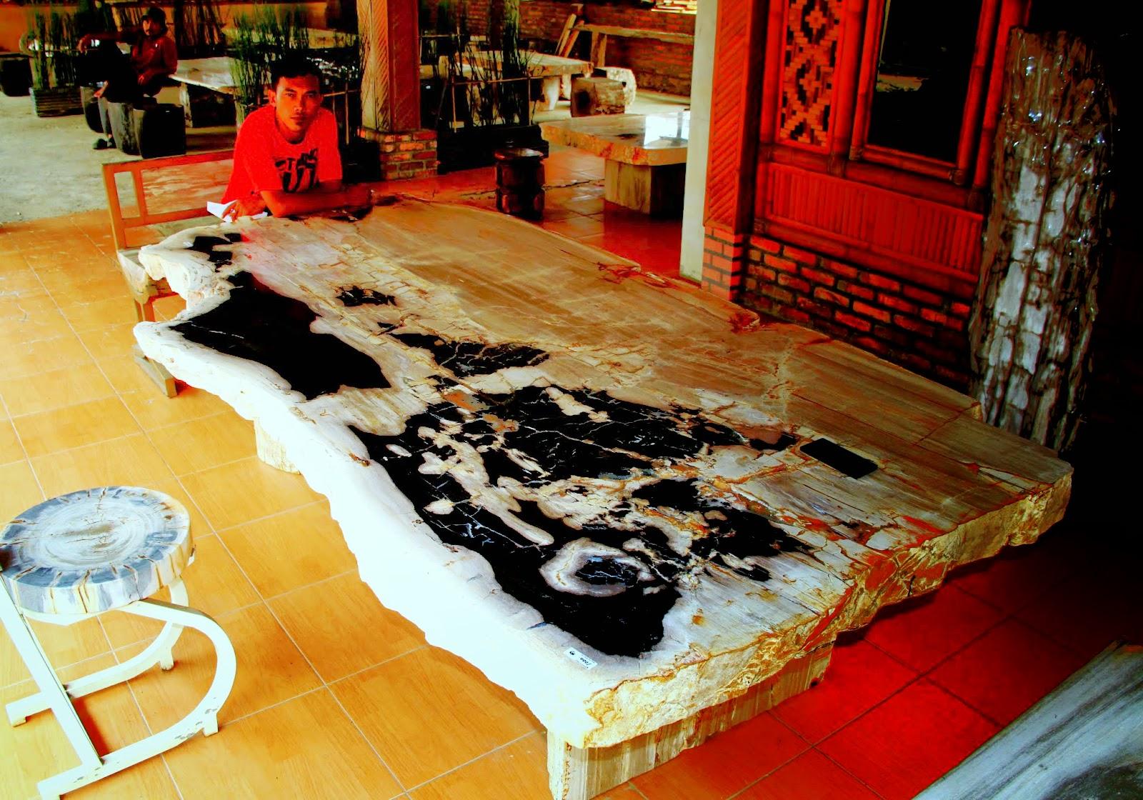 Petrified wood dining table madera mesas de comedor de - Mesas de madera para comedor ...