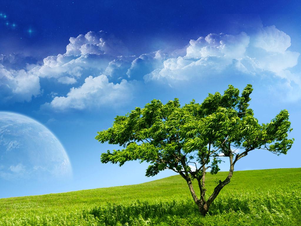 http://2.bp.blogspot.com/-pnk4euLkp8E/T3NLM5OWAlI/AAAAAAAAAgA/p1Xgx-MYDb0/s1600/Nature%2BBeauti%2BClouds%2Blandscapes%2BTrees%2BGreen%2BGrass%2BFresh%2BDesktop.jpg