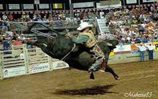 Ada katagori yang berbeda dari acara olahraga di dunia yang mempunyai resiko tersendiri 7 OLAHRAGA PALING BERBAHAYA DI DUNIA