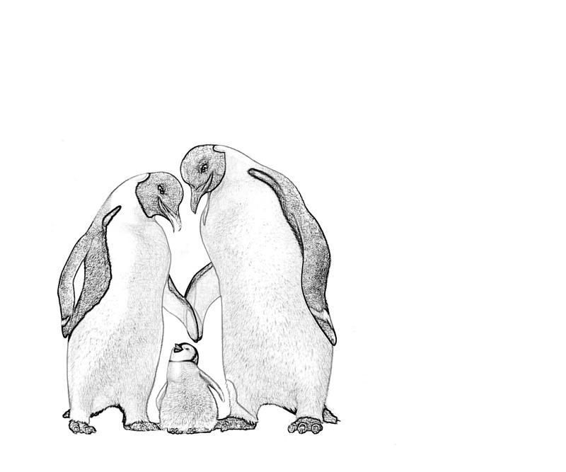 printable happy feet coloring pages - photo#35