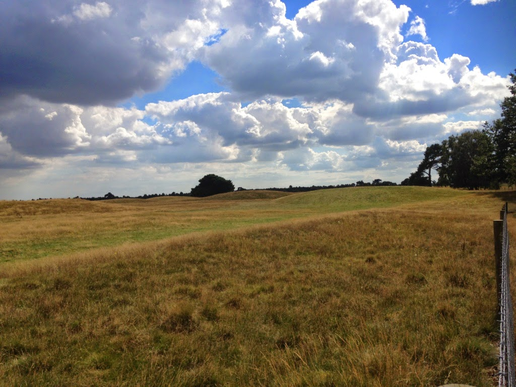 Sutton Hoo mounds