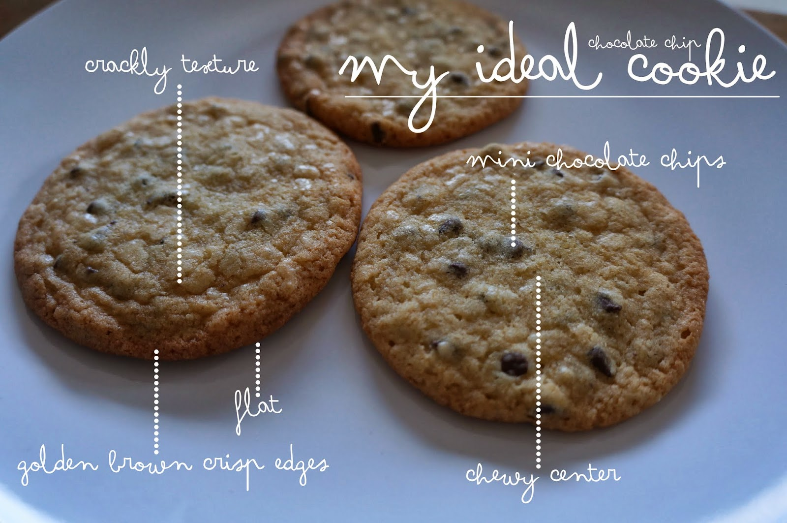 What I Ate  The Best Chocolate Chip Cookies