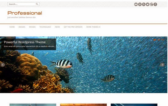 Professional Free WordPress Theme