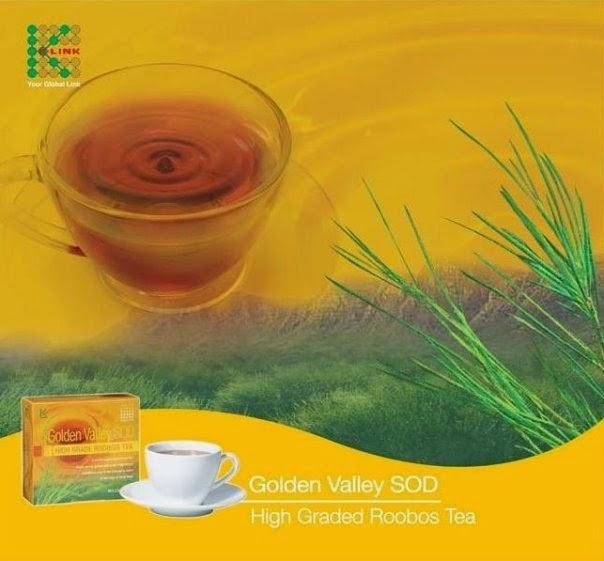 Cara Membuat Minuman Honey Tea Yang Nikmat