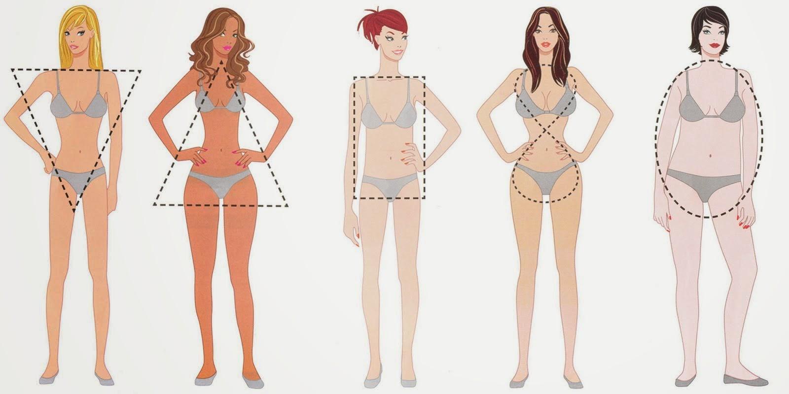 Resultado de imagem para tipos de corpo