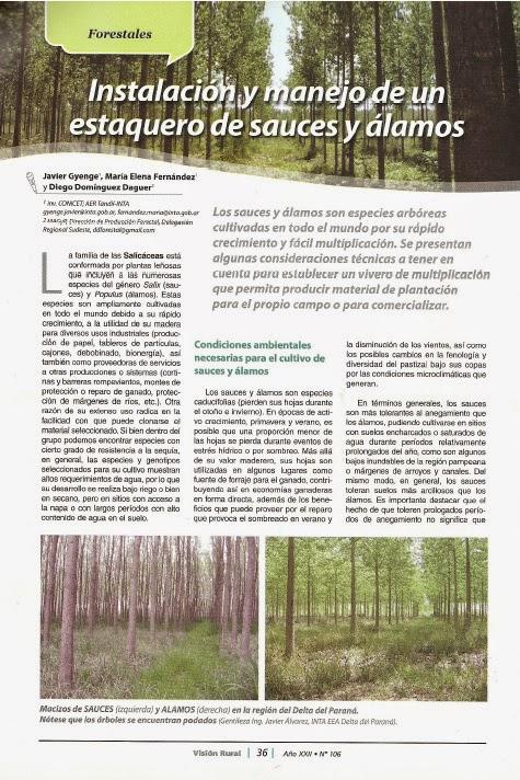 Buenos aires forestal instalaci n y manejo de un for Manejo de viveros forestales
