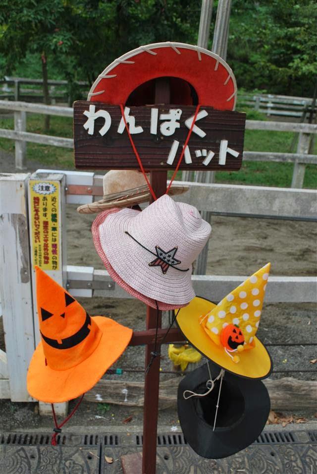 魔法使いの帽子♪
