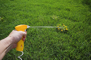 aceto contro le erbacce