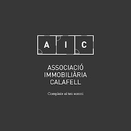 AIC en televisión (ver desde el minuto 4)