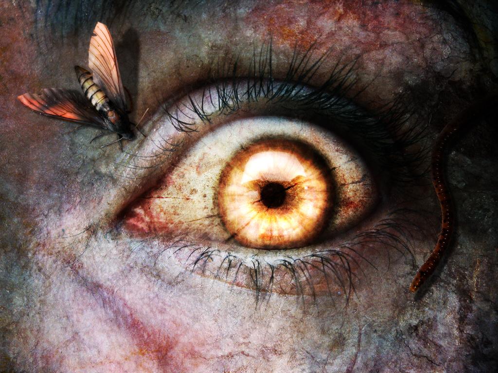 http://2.bp.blogspot.com/-pqjGk3lESmU/TZrLnl8EVnI/AAAAAAAAABc/uE1GbDJxSRE/s1600/horror%206.jpg