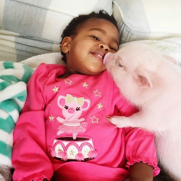 "Their mom Lindsey writes, ""I love all things cute, baby, pastel and sweet!"" - The Heartmelting Friendship Of A 2-Year-Old Girl And Her Piglet"
