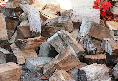 Dorset Log Stores log pile