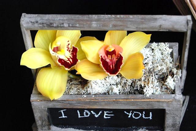 caja orquídeas