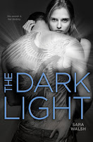 book cover of The Dark Light by Sara Walsh