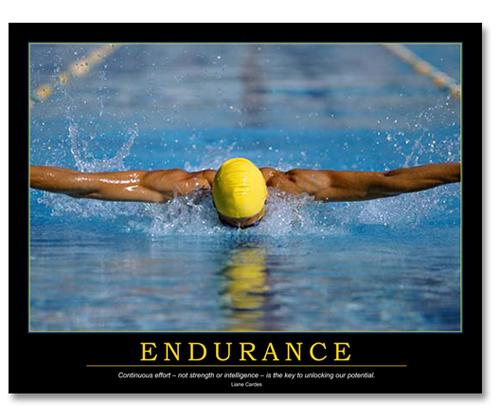 http://2.bp.blogspot.com/-prNBBApl_gw/TpOvaiVQpDI/AAAAAAAAA_E/AhLBgsSN-MU/s1600/Endurance.jpg