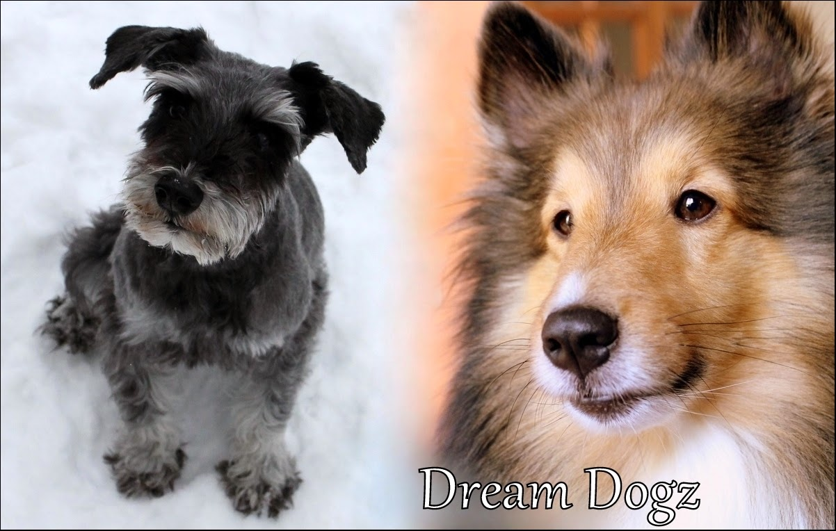 Dream Dogz