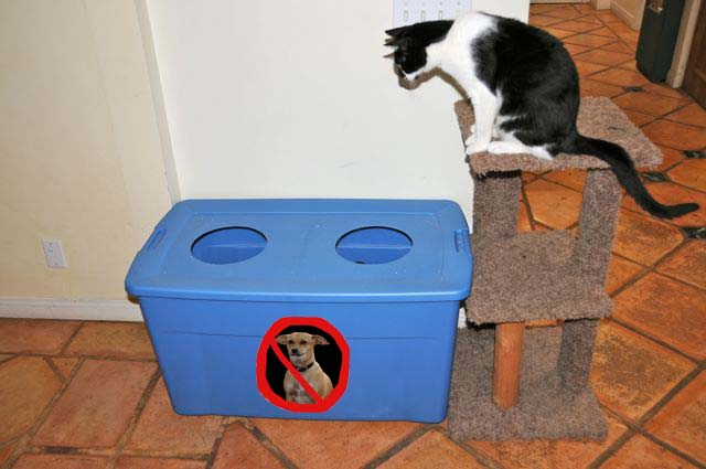 cat litter box furniture australia
