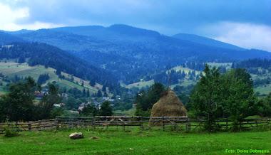 Satul CĂLNACI