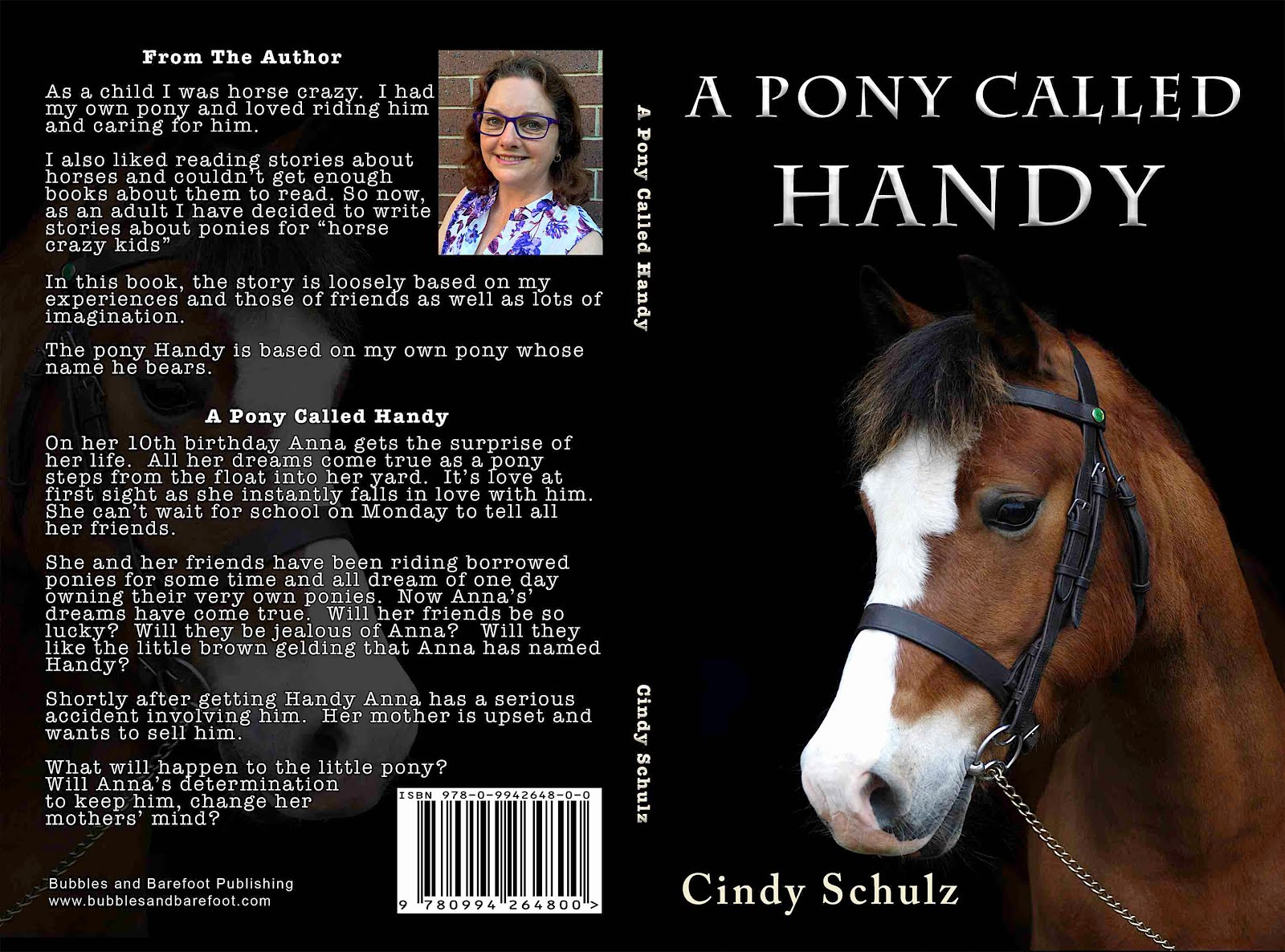 A Pony Called Handy