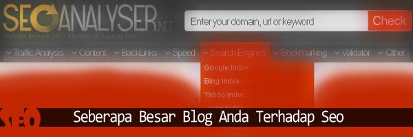 Test Blog Pada Seo Analyser