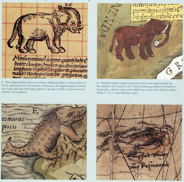Sea Monsters on Medieval + Renaissance Maps by Chet Van Duzer (British Library 2013)